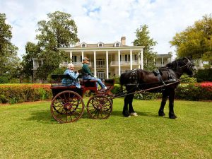 Things to do in Thomasville